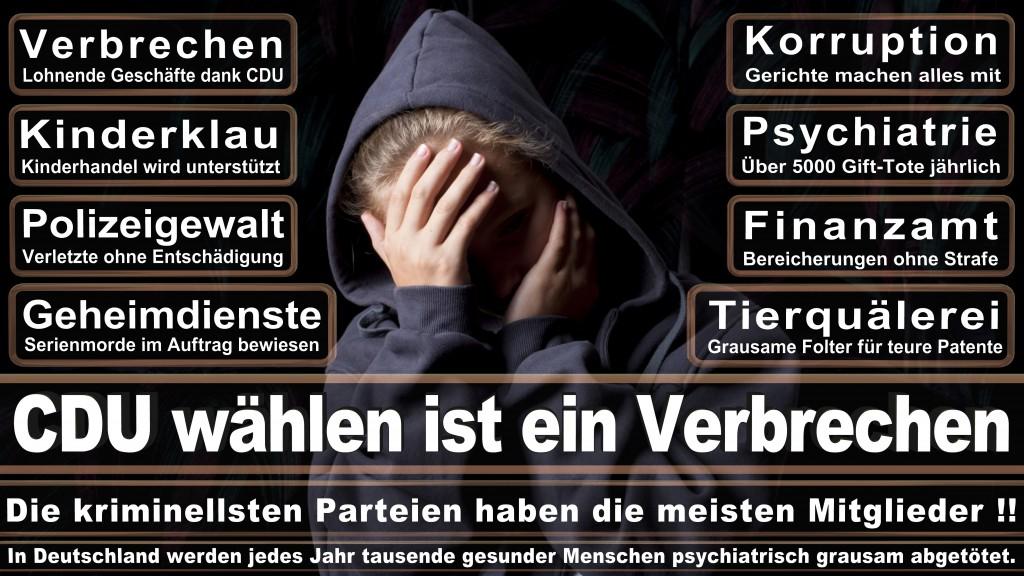 Landtagswahl Baden-Württemberg 2016, CDU, SPD, Landtagswahl Baden-Württemberg 2016,Landtagswahl-Baden-Wuerttemberg-2016 (149) Landtagswahl Baden-Württemberg 2016