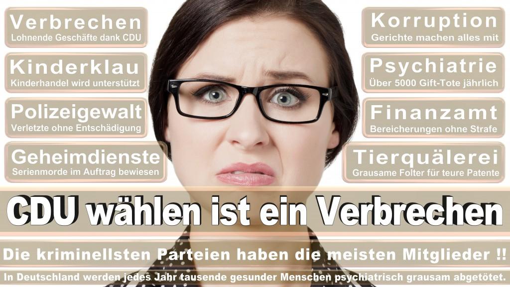 Landtagswahl Baden-Württemberg 2016, CDU, SPD, Landtagswahl Baden-Württemberg 2016,Landtagswahl-Baden-Wuerttemberg-2016 (15) Landtagswahl Baden-Württemberg 2016