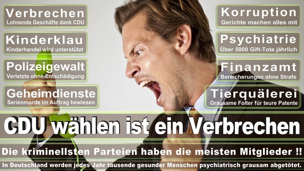 Landtagswahl Baden-Württemberg 2016, CDU, SPD, Landtagswahl Baden-Württemberg 2016,Landtagswahl-Baden-Wuerttemberg-2016 (161) Landtagswahl Baden-Württemberg 2016