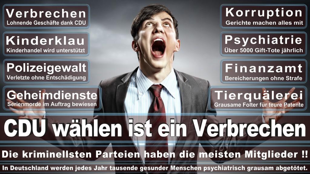 Landtagswahl Baden-Württemberg 2016, CDU, SPD, Landtagswahl Baden-Württemberg 2016,Landtagswahl-Baden-Wuerttemberg-2016 (163) Landtagswahl Baden-Württemberg 2016