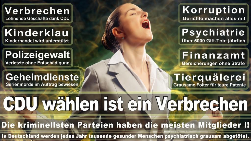 Landtagswahl Baden-Württemberg 2016, CDU, SPD, Landtagswahl Baden-Württemberg 2016,Landtagswahl-Baden-Wuerttemberg-2016 (165) Landtagswahl Baden-Württemberg 2016