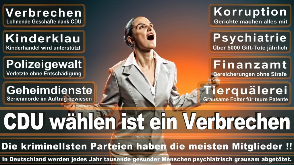 Landtagswahl Baden-Württemberg 2016, CDU, SPD, Landtagswahl Baden-Württemberg 2016,Landtagswahl-Baden-Wuerttemberg-2016 (167) Landtagswahl Baden-Württemberg 2016