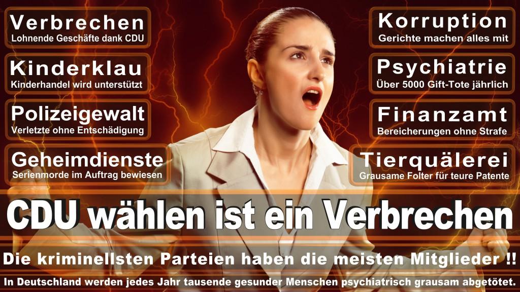 Landtagswahl Baden-Württemberg 2016, CDU, SPD, Landtagswahl Baden-Württemberg 2016,Landtagswahl-Baden-Wuerttemberg-2016 (169) Landtagswahl Baden-Württemberg 2016
