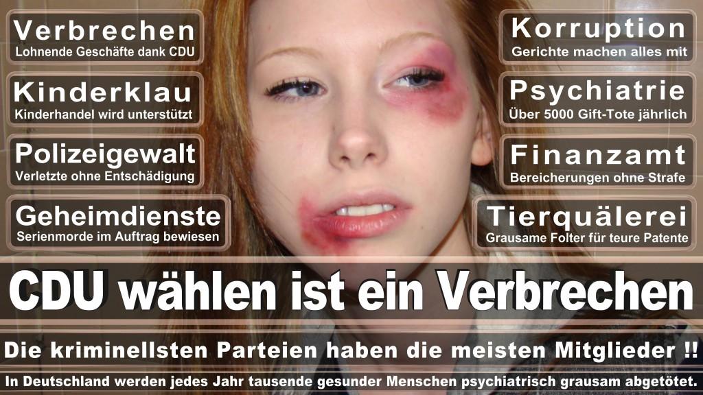 Landtagswahl Baden-Württemberg 2016, CDU, SPD, Landtagswahl Baden-Württemberg 2016,Landtagswahl-Baden-Wuerttemberg-2016 (17) Landtagswahl Baden-Württemberg 2016
