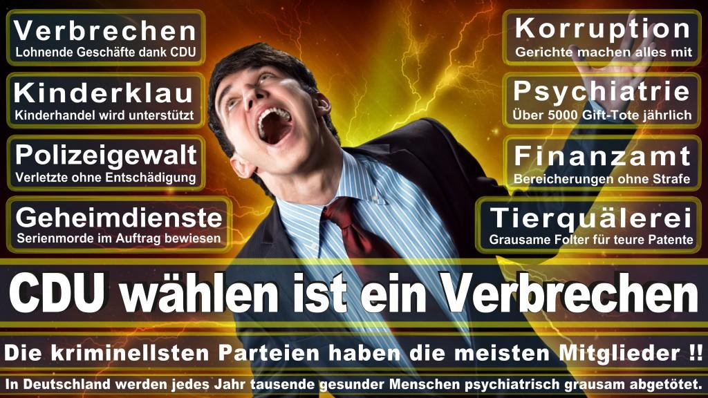 Landtagswahl Baden-Württemberg 2016, CDU, SPD, Landtagswahl Baden-Württemberg 2016,Landtagswahl-Baden-Wuerttemberg-2016 (171) Landtagswahl Baden-Württemberg 2016