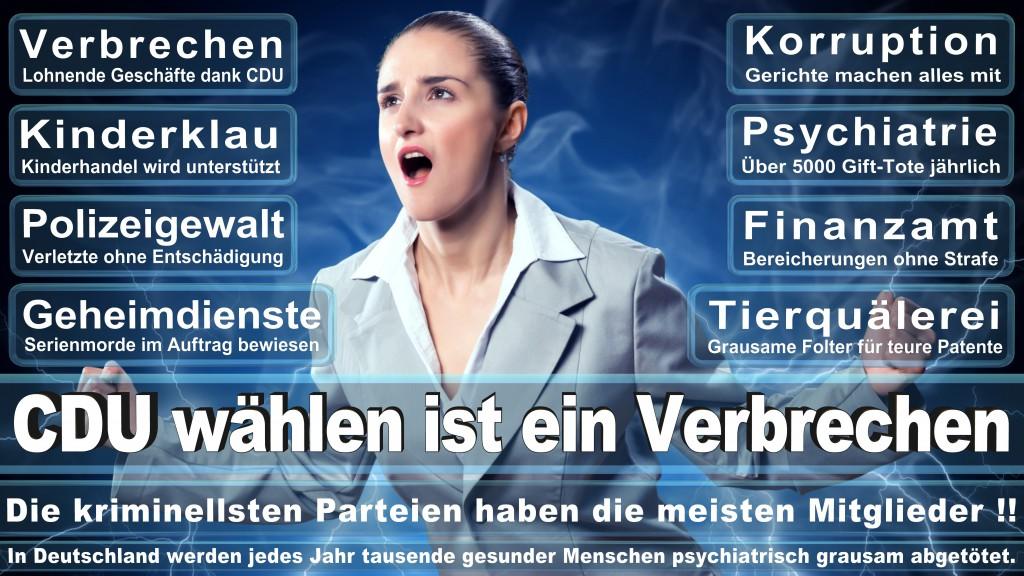 Landtagswahl Baden-Württemberg 2016, CDU, SPD, Landtagswahl Baden-Württemberg 2016,Landtagswahl-Baden-Wuerttemberg-2016 (173) Landtagswahl Baden-Württemberg 2016