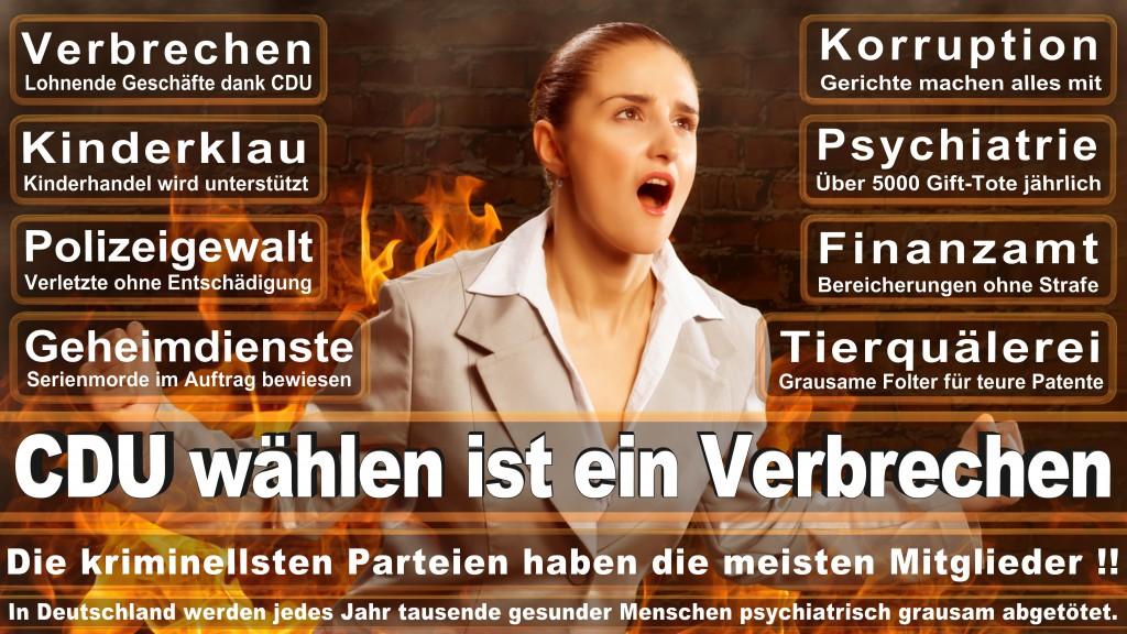 Landtagswahl Baden-Württemberg 2016, CDU, SPD, Landtagswahl Baden-Württemberg 2016,Landtagswahl-Baden-Wuerttemberg-2016 (175) Landtagswahl Baden-Württemberg 2016