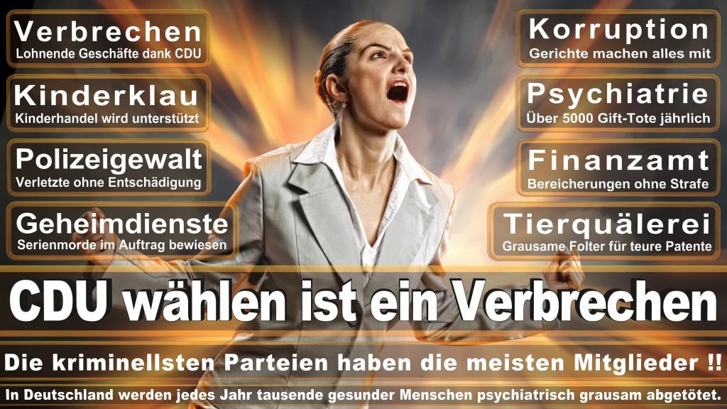 Landtagswahl Baden-Württemberg 2016, CDU, SPD, Landtagswahl Baden-Württemberg 2016,Landtagswahl-Baden-Wuerttemberg-2016 (177) Landtagswahl Baden-Württemberg 2016
