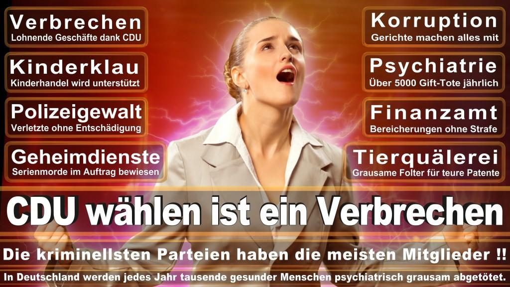 Landtagswahl Baden-Württemberg 2016, CDU, SPD, Landtagswahl Baden-Württemberg 2016,Landtagswahl-Baden-Wuerttemberg-2016 (179) Landtagswahl Baden-Württemberg 2016