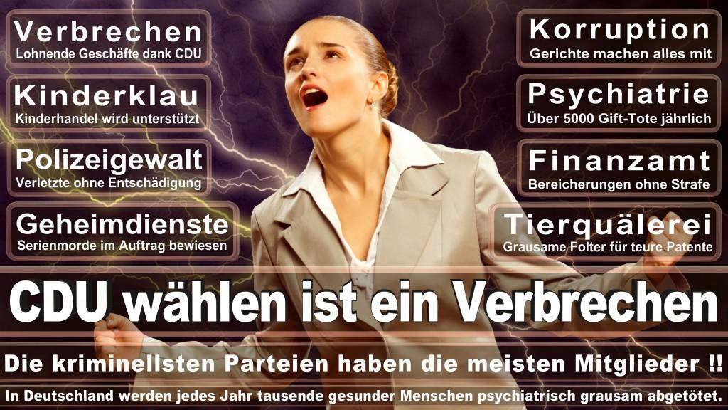 Landtagswahl Baden-Württemberg 2016, CDU, SPD, Landtagswahl Baden-Württemberg 2016,Landtagswahl-Baden-Wuerttemberg-2016 (181) Landtagswahl Baden-Württemberg 2016