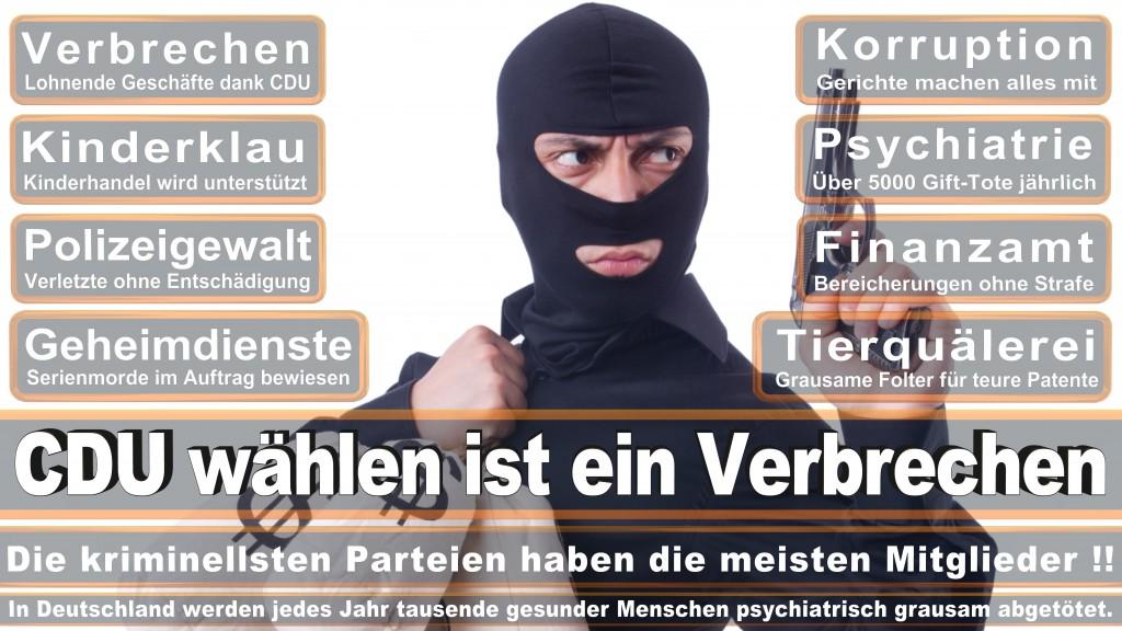 Landtagswahl Baden-Württemberg 2016, CDU, SPD, Landtagswahl Baden-Württemberg 2016,Landtagswahl-Baden-Wuerttemberg-2016 (189) Landtagswahl Baden-Württemberg 2016