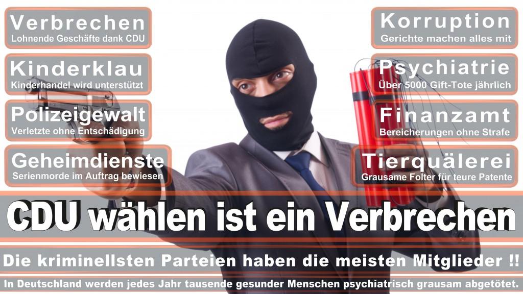 Landtagswahl Baden-Württemberg 2016, CDU, SPD, Landtagswahl Baden-Württemberg 2016,Landtagswahl-Baden-Wuerttemberg-2016 (191) Landtagswahl Baden-Württemberg 2016