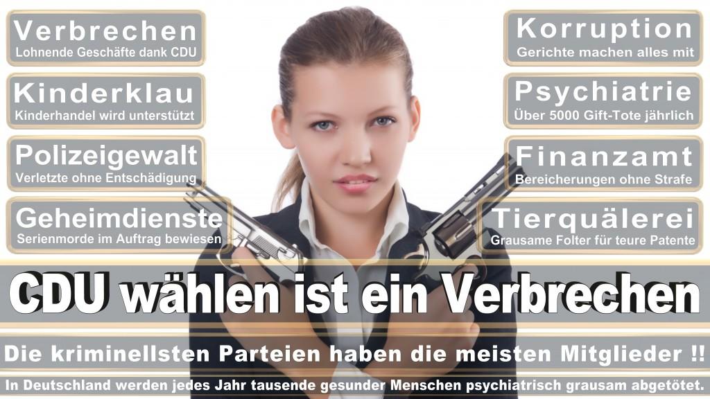 Landtagswahl Baden-Württemberg 2016, CDU, SPD, Landtagswahl Baden-Württemberg 2016,Landtagswahl-Baden-Wuerttemberg-2016 (193) Landtagswahl Baden-Württemberg 2016