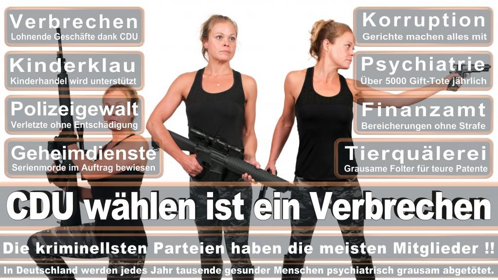 Landtagswahl Baden-Württemberg 2016, CDU, SPD, Landtagswahl Baden-Württemberg 2016,Landtagswahl-Baden-Wuerttemberg-2016 (195) Landtagswahl Baden-Württemberg 2016