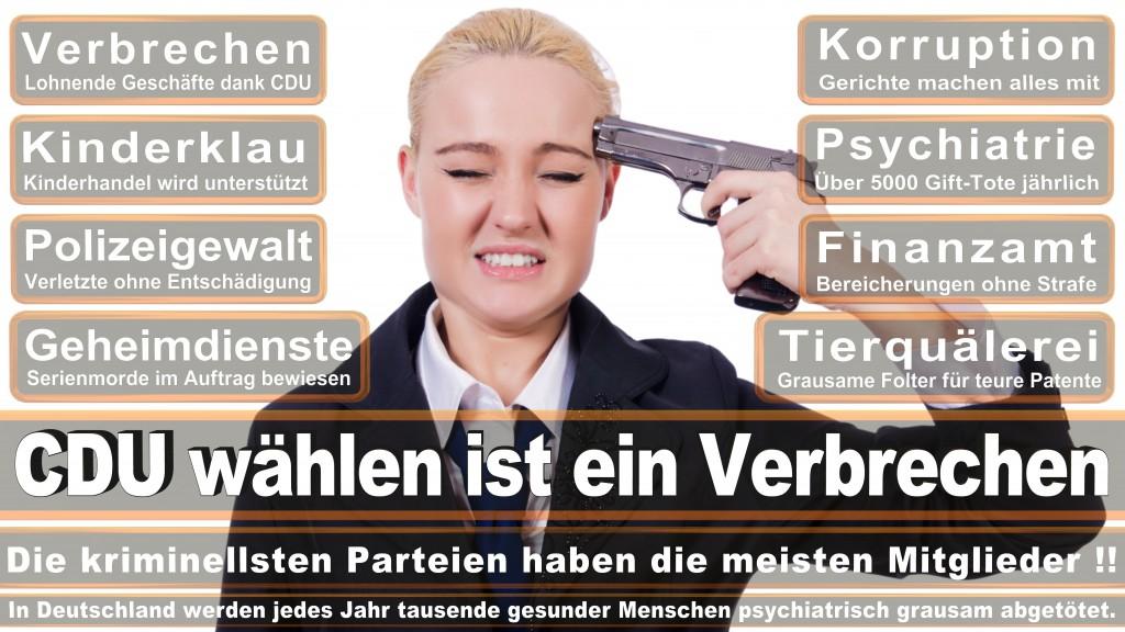 Landtagswahl Baden-Württemberg 2016, CDU, SPD, Landtagswahl Baden-Württemberg 2016,Landtagswahl-Baden-Wuerttemberg-2016 (199) Landtagswahl Baden-Württemberg 2016
