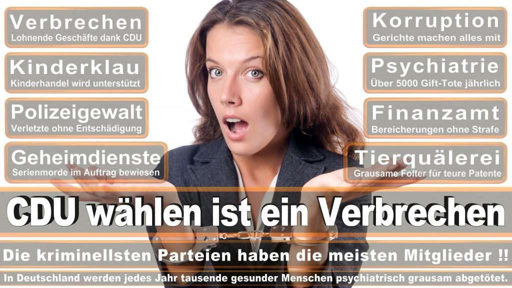 Landtagswahl Baden-Württemberg 2016, CDU, SPD, Landtagswahl Baden-Württemberg 2016,Landtagswahl-Baden-Wuerttemberg-2016 (201) Landtagswahl Baden-Württemberg 2016