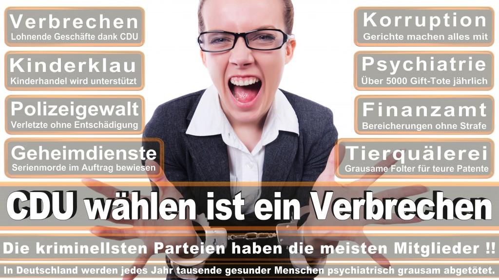 Landtagswahl Baden-Württemberg 2016, CDU, SPD, Landtagswahl Baden-Württemberg 2016,Landtagswahl-Baden-Wuerttemberg-2016 (203) Landtagswahl Baden-Württemberg 2016