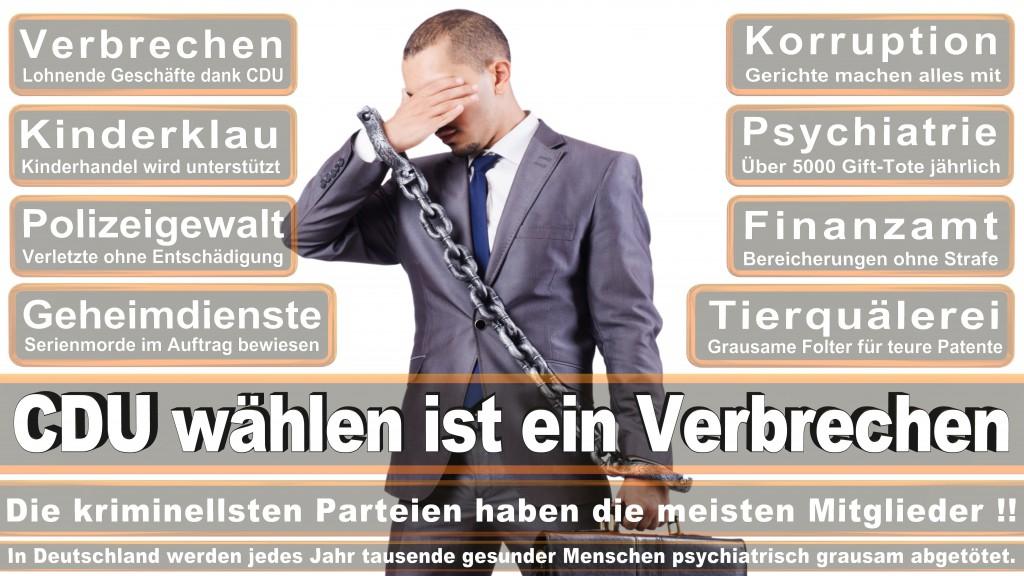 Landtagswahl Baden-Württemberg 2016, CDU, SPD, Landtagswahl Baden-Württemberg 2016,Landtagswahl-Baden-Wuerttemberg-2016 (205) Landtagswahl Baden-Württemberg 2016