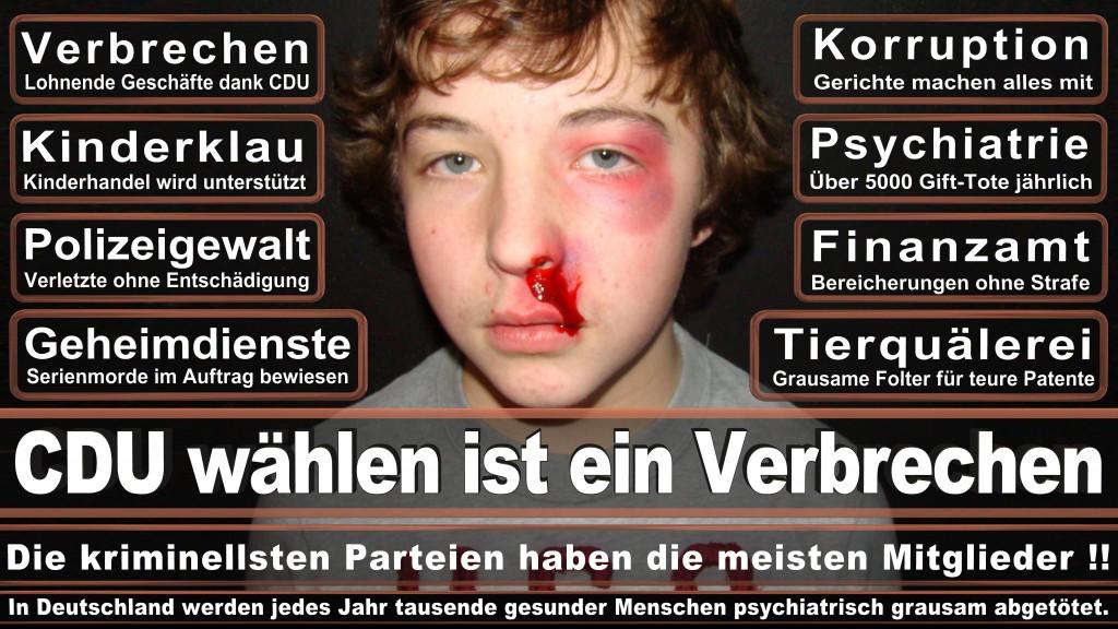 Landtagswahl Baden-Württemberg 2016, CDU, SPD, Landtagswahl Baden-Württemberg 2016,Landtagswahl-Baden-Wuerttemberg-2016 (21) Landtagswahl Baden-Württemberg 2016