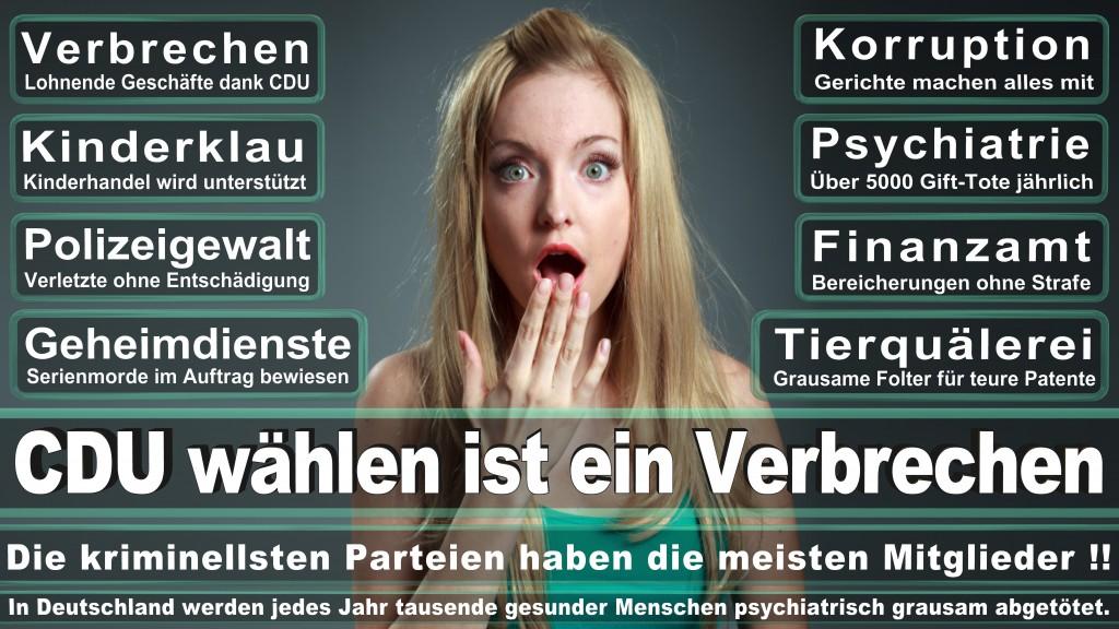 Landtagswahl Baden-Württemberg 2016, CDU, SPD, Landtagswahl Baden-Württemberg 2016,Landtagswahl-Baden-Wuerttemberg-2016 (217) Landtagswahl Baden-Württemberg 2016