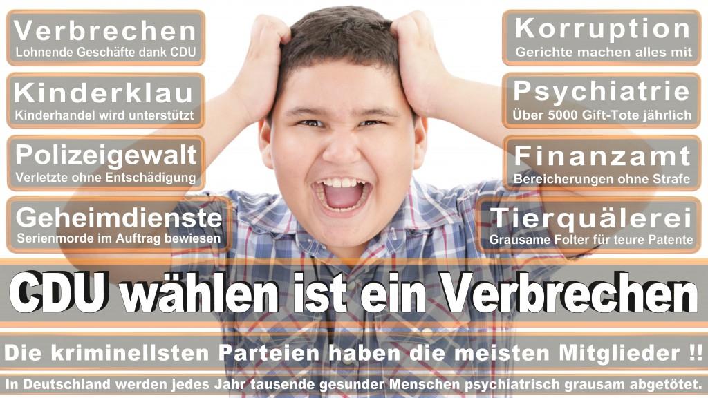 Landtagswahl Baden-Württemberg 2016, CDU, SPD, Landtagswahl Baden-Württemberg 2016,Landtagswahl-Baden-Wuerttemberg-2016 (219) Landtagswahl Baden-Württemberg 2016