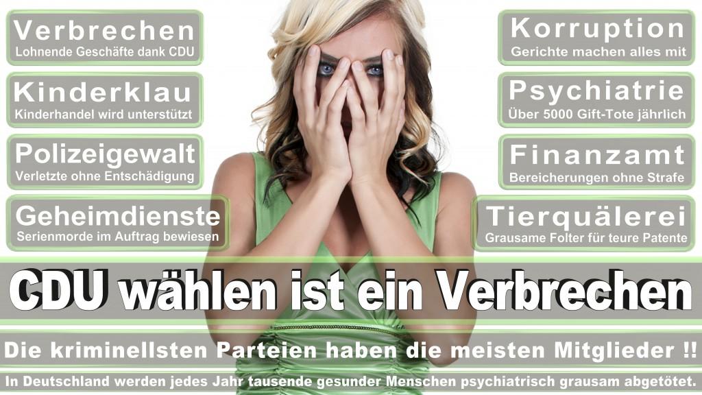 Landtagswahl Baden-Württemberg 2016, CDU, SPD, Landtagswahl Baden-Württemberg 2016,Landtagswahl-Baden-Wuerttemberg-2016 (221) Landtagswahl Baden-Württemberg 2016
