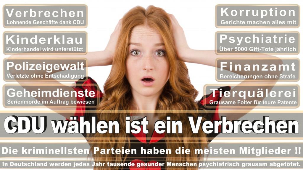 Landtagswahl Baden-Württemberg 2016, CDU, SPD, Landtagswahl Baden-Württemberg 2016,Landtagswahl-Baden-Wuerttemberg-2016 (223) Landtagswahl Baden-Württemberg 2016