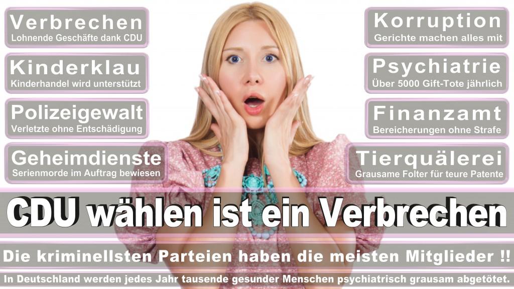 Landtagswahl Baden-Württemberg 2016, CDU, SPD, Landtagswahl Baden-Württemberg 2016,Landtagswahl-Baden-Wuerttemberg-2016 (225) Landtagswahl Baden-Württemberg 2016