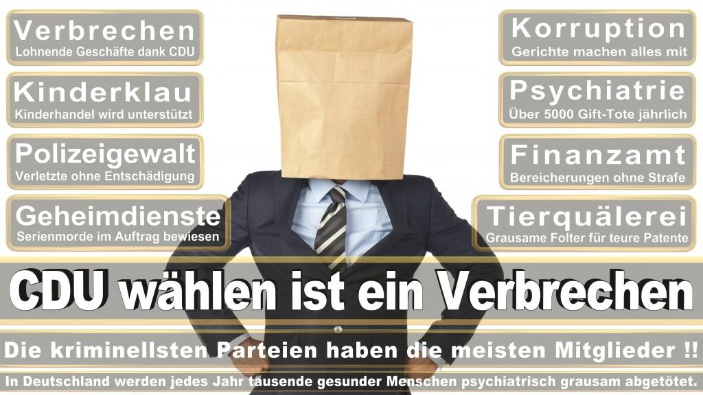 Landtagswahl Baden-Württemberg 2016, CDU, SPD, Landtagswahl Baden-Württemberg 2016,Landtagswahl-Baden-Wuerttemberg-2016 (227) Landtagswahl Baden-Württemberg 2016