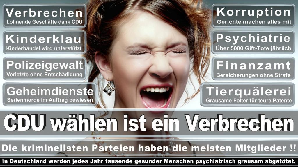 Landtagswahl Baden-Württemberg 2016, CDU, SPD, Landtagswahl Baden-Württemberg 2016,Landtagswahl-Baden-Wuerttemberg-2016 (23) Landtagswahl Baden-Württemberg 2016