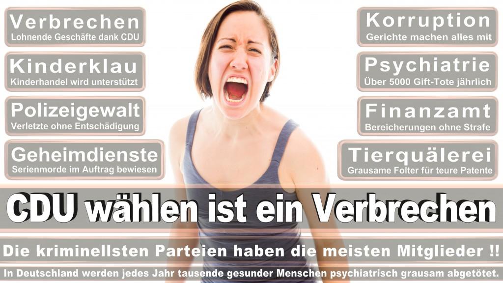 Landtagswahl Baden-Württemberg 2016, CDU, SPD, Landtagswahl Baden-Württemberg 2016,Landtagswahl-Baden-Wuerttemberg-2016 (233) Landtagswahl Baden-Württemberg 2016
