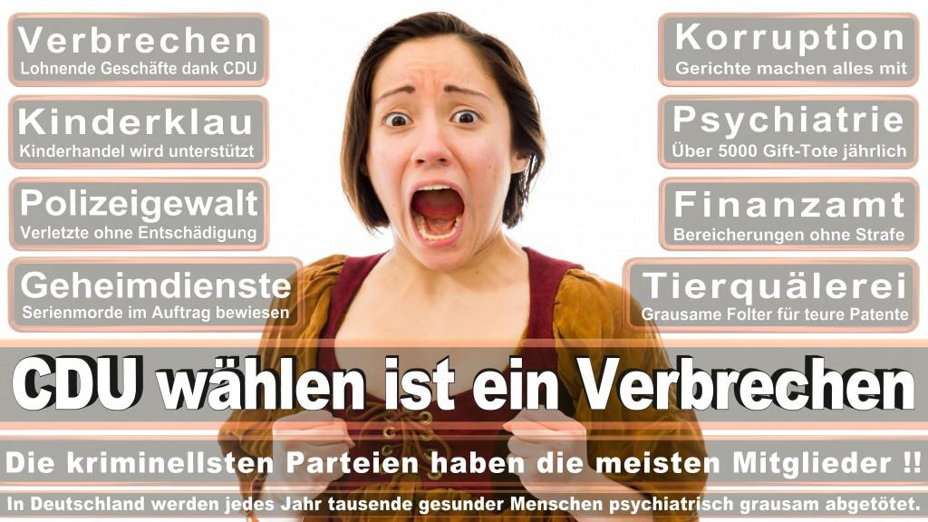Landtagswahl Baden-Württemberg 2016, CDU, SPD, Landtagswahl Baden-Württemberg 2016,Landtagswahl-Baden-Wuerttemberg-2016 (235) Landtagswahl Baden-Württemberg 2016
