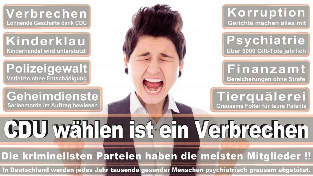Landtagswahl Baden-Württemberg 2016, CDU, SPD, Landtagswahl Baden-Württemberg 2016,Landtagswahl-Baden-Wuerttemberg-2016 (237) Landtagswahl Baden-Württemberg 2016