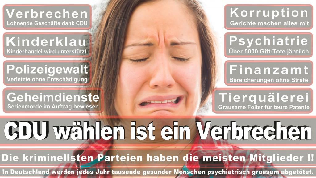 Landtagswahl Baden-Württemberg 2016, CDU, SPD, Landtagswahl Baden-Württemberg 2016,Landtagswahl-Baden-Wuerttemberg-2016 (239) Landtagswahl Baden-Württemberg 2016