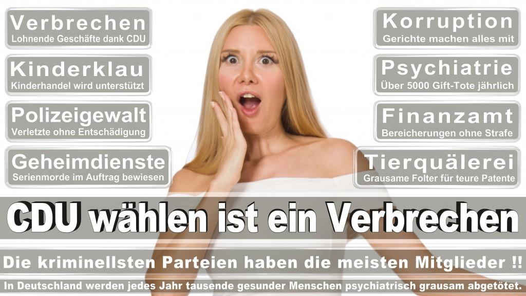 Landtagswahl Baden-Württemberg 2016, CDU, SPD, Landtagswahl Baden-Württemberg 2016,Landtagswahl-Baden-Wuerttemberg-2016 (241) Landtagswahl Baden-Württemberg 2016