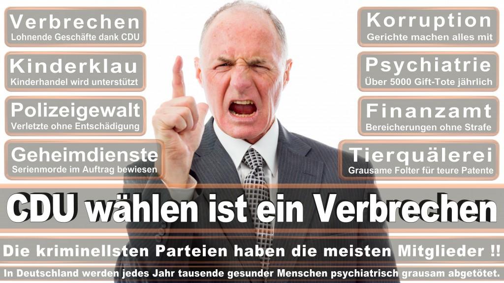 Landtagswahl Baden-Württemberg 2016, CDU, SPD, Landtagswahl Baden-Württemberg 2016,Landtagswahl-Baden-Wuerttemberg-2016 (243) Landtagswahl Baden-Württemberg 2016