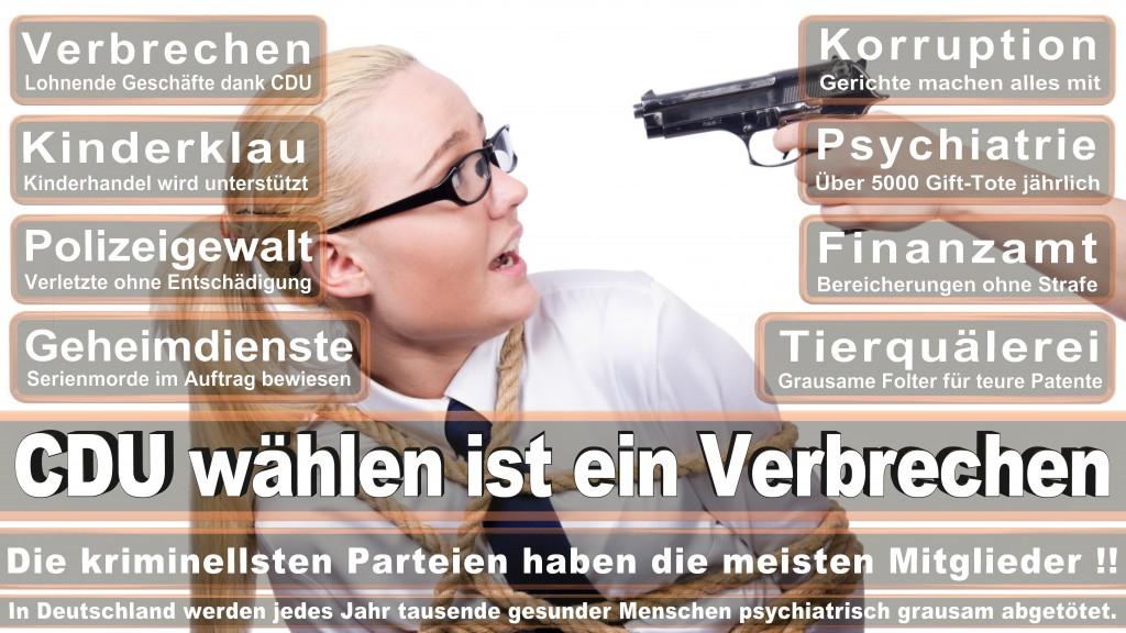 Landtagswahl Baden-Württemberg 2016, CDU, SPD, Landtagswahl Baden-Württemberg 2016,Landtagswahl-Baden-Wuerttemberg-2016 (245) Landtagswahl Baden-Württemberg 2016