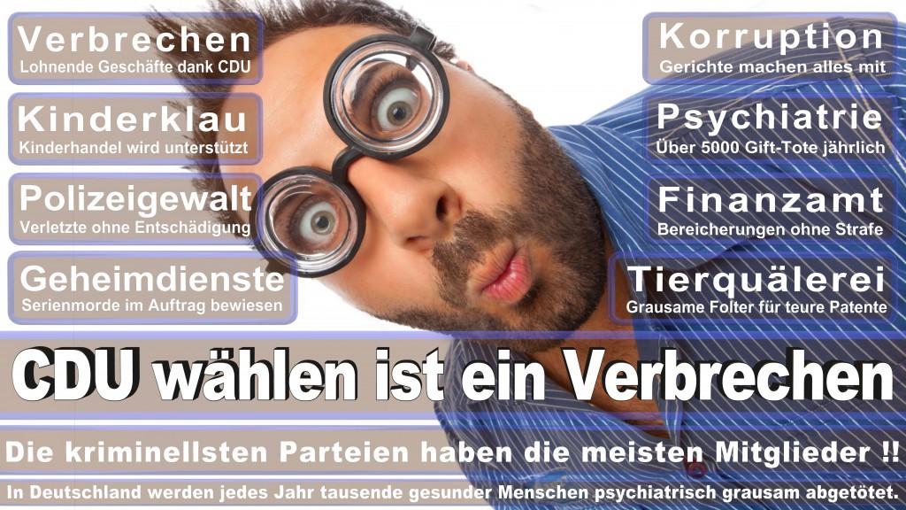 Landtagswahl Baden-Württemberg 2016, CDU, SPD, Landtagswahl Baden-Württemberg 2016,Landtagswahl-Baden-Wuerttemberg-2016 (247) Landtagswahl Baden-Württemberg 2016
