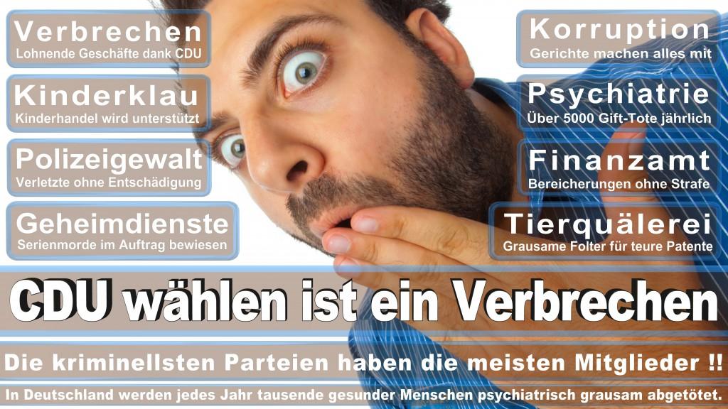 Landtagswahl Baden-Württemberg 2016, CDU, SPD, Landtagswahl Baden-Württemberg 2016,Landtagswahl-Baden-Wuerttemberg-2016 (249) Landtagswahl Baden-Württemberg 2016