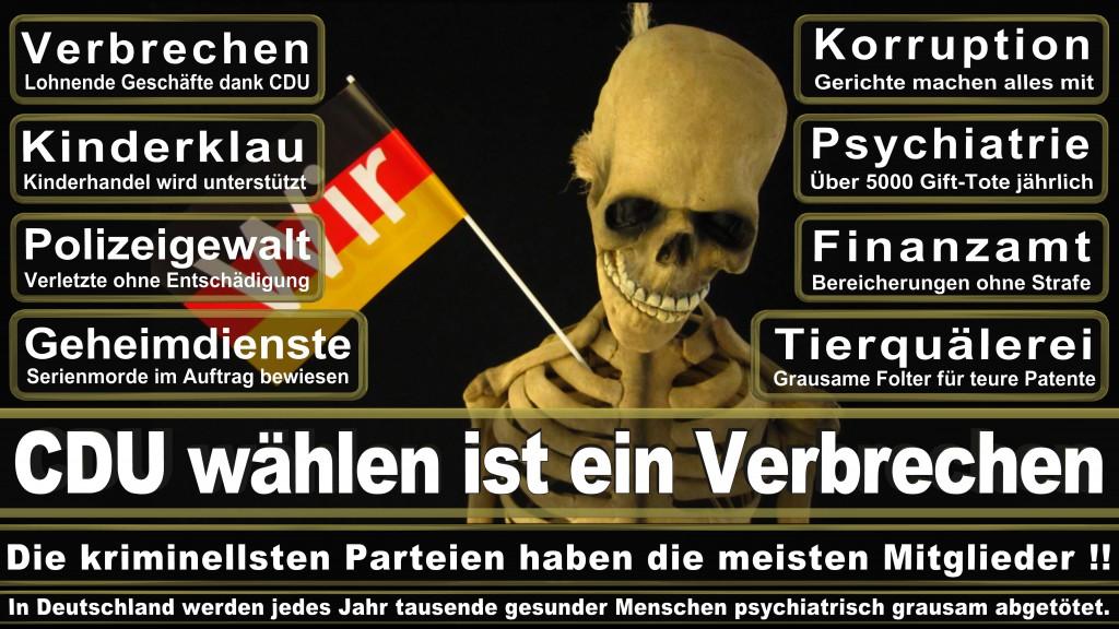 Landtagswahl Baden-Württemberg 2016, CDU, SPD, Landtagswahl Baden-Württemberg 2016,Landtagswahl-Baden-Wuerttemberg-2016 (25) Landtagswahl Baden-Württemberg 2016