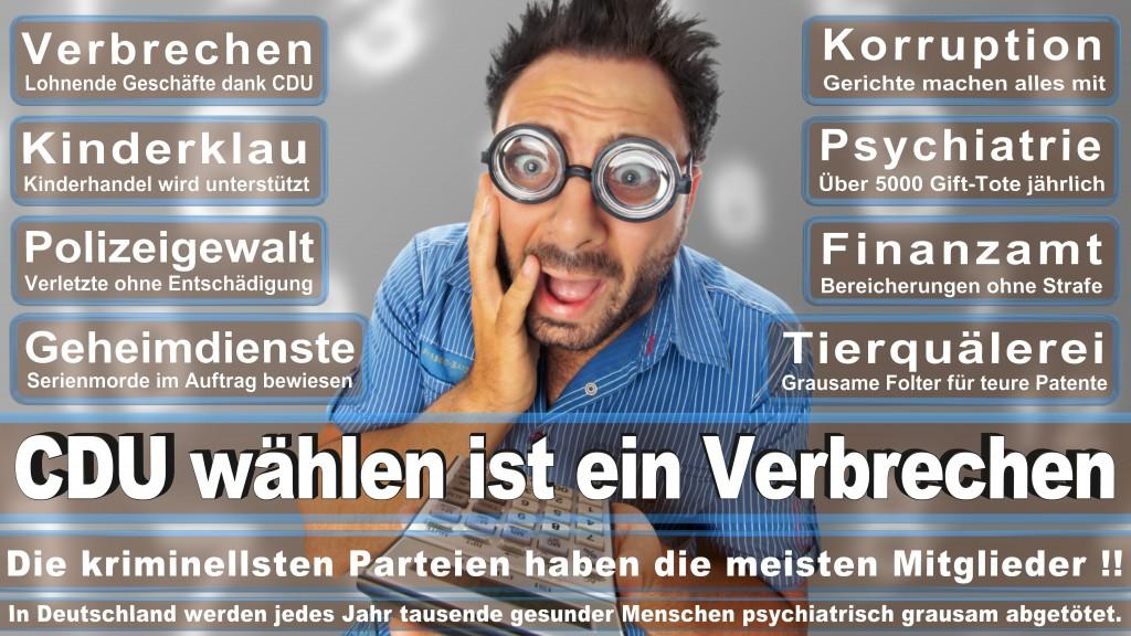 Landtagswahl Baden-Württemberg 2016, CDU, SPD, Landtagswahl Baden-Württemberg 2016,Landtagswahl-Baden-Wuerttemberg-2016 (251) Landtagswahl Baden-Württemberg 2016