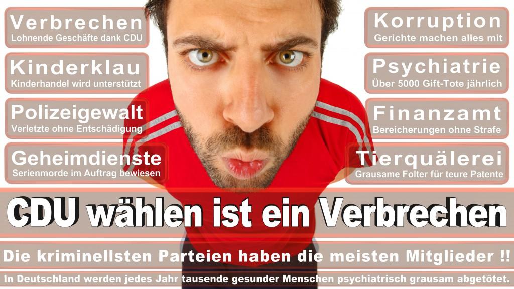 Landtagswahl Baden-Württemberg 2016, CDU, SPD, Landtagswahl Baden-Württemberg 2016,Landtagswahl-Baden-Wuerttemberg-2016 (253) Landtagswahl Baden-Württemberg 2016