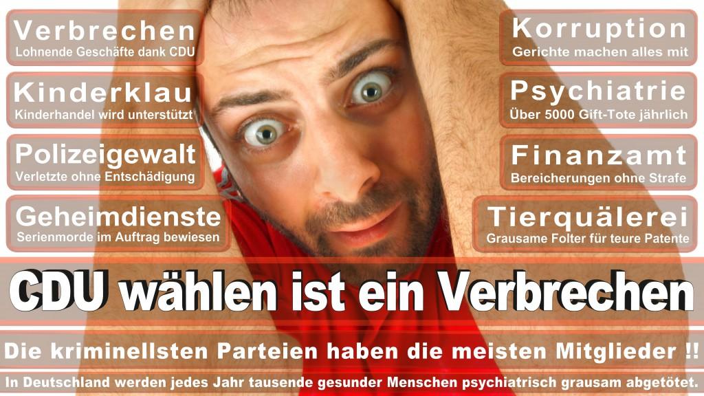 Landtagswahl Baden-Württemberg 2016, CDU, SPD, Landtagswahl Baden-Württemberg 2016,Landtagswahl-Baden-Wuerttemberg-2016 (255) Landtagswahl Baden-Württemberg 2016