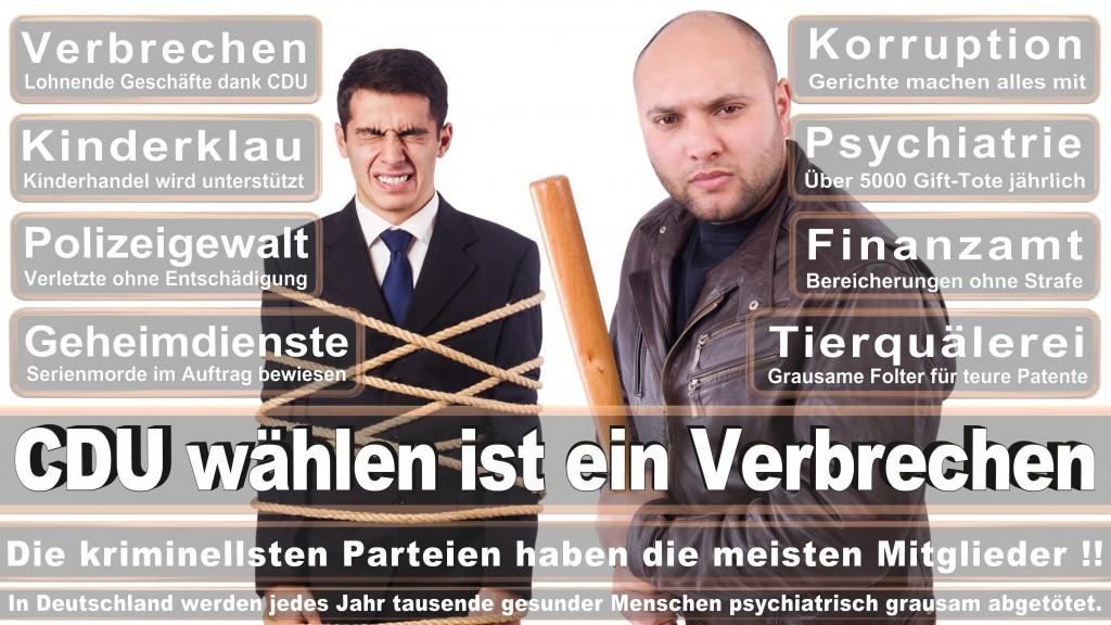 Landtagswahl Baden-Württemberg 2016, CDU, SPD, Landtagswahl Baden-Württemberg 2016,Landtagswahl-Baden-Wuerttemberg-2016 (259) Landtagswahl Baden-Württemberg 2016