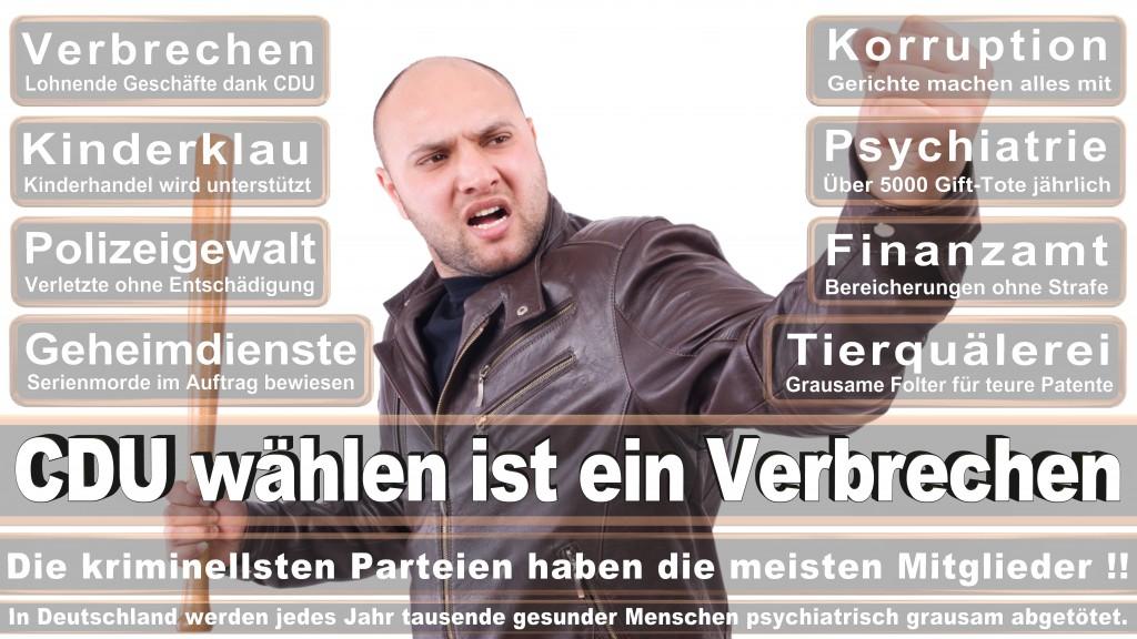 Landtagswahl Baden-Württemberg 2016, CDU, SPD, Landtagswahl Baden-Württemberg 2016,Landtagswahl-Baden-Wuerttemberg-2016 (261) Landtagswahl Baden-Württemberg 2016