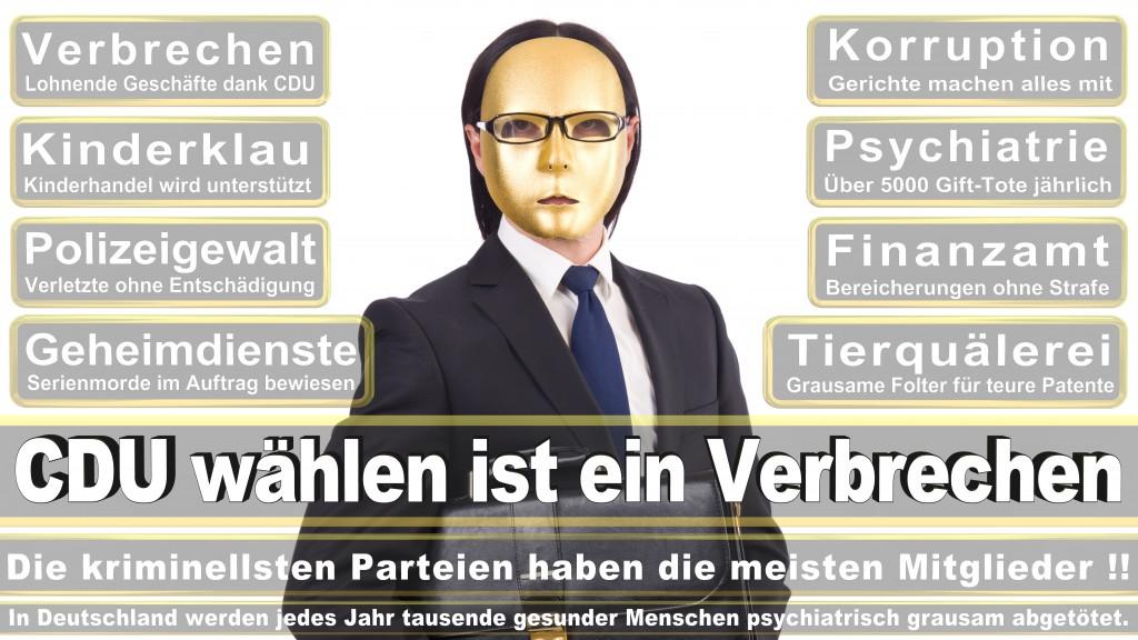 Landtagswahl Baden-Württemberg 2016, CDU, SPD, Landtagswahl Baden-Württemberg 2016,Landtagswahl-Baden-Wuerttemberg-2016 (265) Landtagswahl Baden-Württemberg 2016