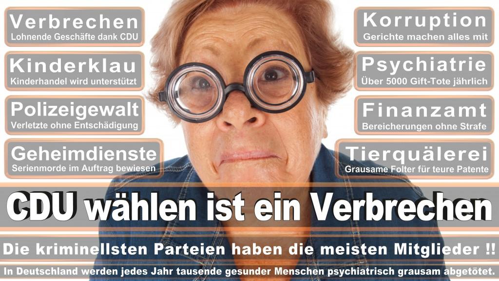 Landtagswahl Baden-Württemberg 2016, CDU, SPD, Landtagswahl Baden-Württemberg 2016,Landtagswahl-Baden-Wuerttemberg-2016 (269) Landtagswahl Baden-Württemberg 2016