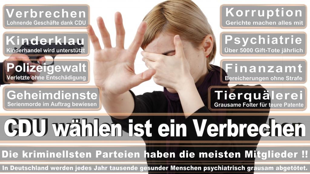 Landtagswahl Baden-Württemberg 2016, CDU, SPD, Landtagswahl Baden-Württemberg 2016,Landtagswahl-Baden-Wuerttemberg-2016 (273) Landtagswahl Baden-Württemberg 2016