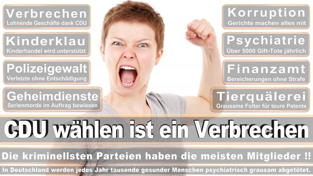 Landtagswahl Baden-Württemberg 2016, CDU, SPD, Landtagswahl Baden-Württemberg 2016,Landtagswahl-Baden-Wuerttemberg-2016 (281) Landtagswahl Baden-Württemberg 2016