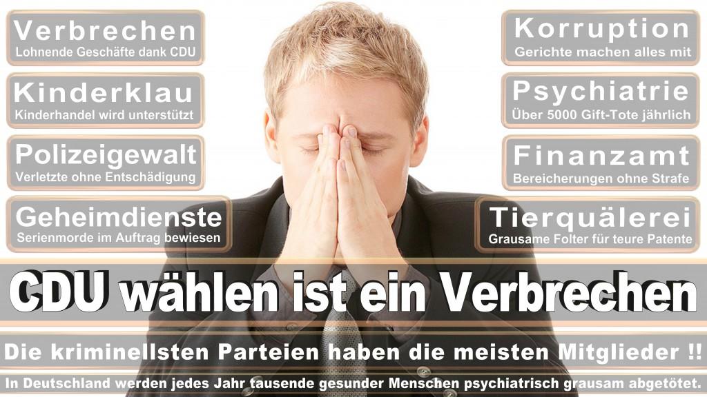 Landtagswahl Baden-Württemberg 2016, CDU, SPD, Landtagswahl Baden-Württemberg 2016,Landtagswahl-Baden-Wuerttemberg-2016 (285) Landtagswahl Baden-Württemberg 2016